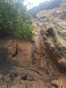Rock Climbing Photo: Looking up at the route (the first thread is blue ...