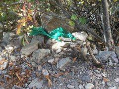 Rock Climbing Photo: I mean really?
