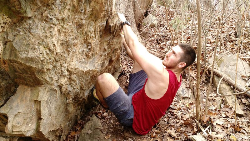 Rock Climbing Photo: The start of TINC.