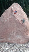 Rock Climbing Photo: Speed climbing.