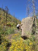 Rock Climbing Photo: Nice problem, pretty flowers
