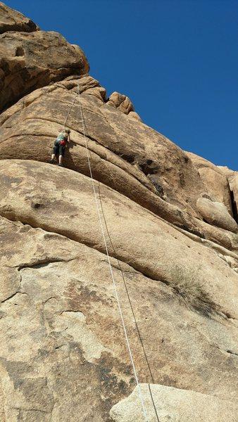Rock Climbing Photo: Caitlin Scott on The Sand Donkey