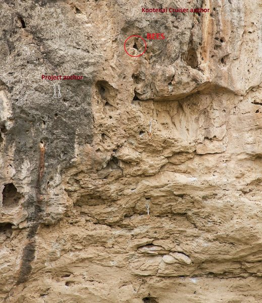 Rock Climbing Photo: Active beehive at top of Kootenai Cruiser