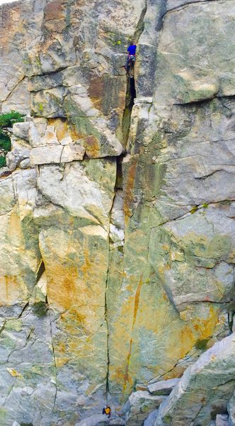 Rock Climbing Photo: Darwin classic mega splitter!! Photo by Hammerland...