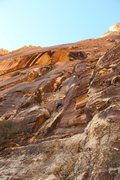 Rock Climbing Photo: Red rock Climbing