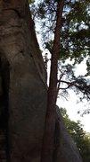 Rock Climbing Photo: Buzzard Breath, somewhere around the 4th bolt.