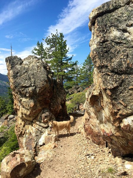 "Rock Climbing Photo: ""Castle Gates"" boulders. You'll find..."