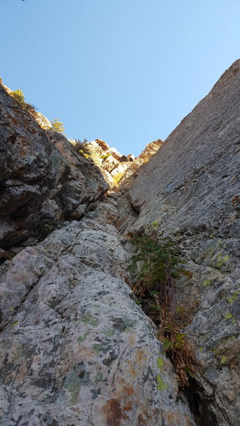 Just a view looking up the crack system near the top. The bottom is pretty easy. Kind of stemming and scrambling. There was a bolted anchor about 1 or 200 feet up with blue webbing not equalized. Webbing probably needs replaced. Didn&@POUND@39@SEMICOLON@t look at it closely. A pitch above that was the really crumby anchor and then I didn&@POUND@39@SEMICOLON@t see any anchor beyond that one. Some leaver biners or rap rings would be nice. Sorry but old webbing is just sketch. The rock was really nice though and with gear and a partner the climb would be a great day. Helmet is good for potential rockfall.