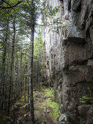 Rock Climbing Photo: Geometry Wall, Swift Current, Newfoundland.