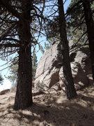 Rock Climbing Photo: Condor