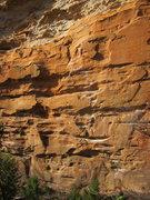 Rock Climbing Photo: Dial-a-Lama