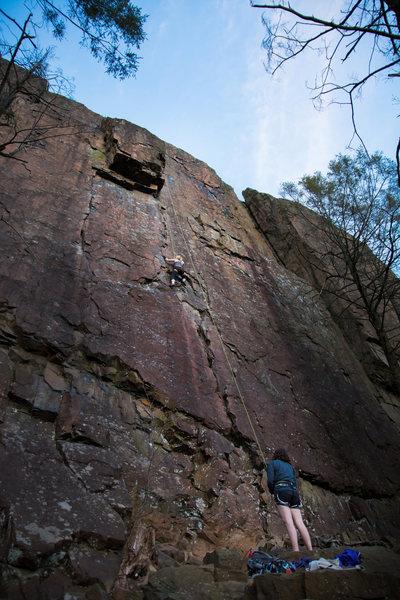 Rock Climbing Photo: Annie top roping Broadway