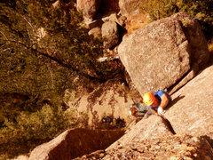 Rock Climbing Photo: Hand crack!