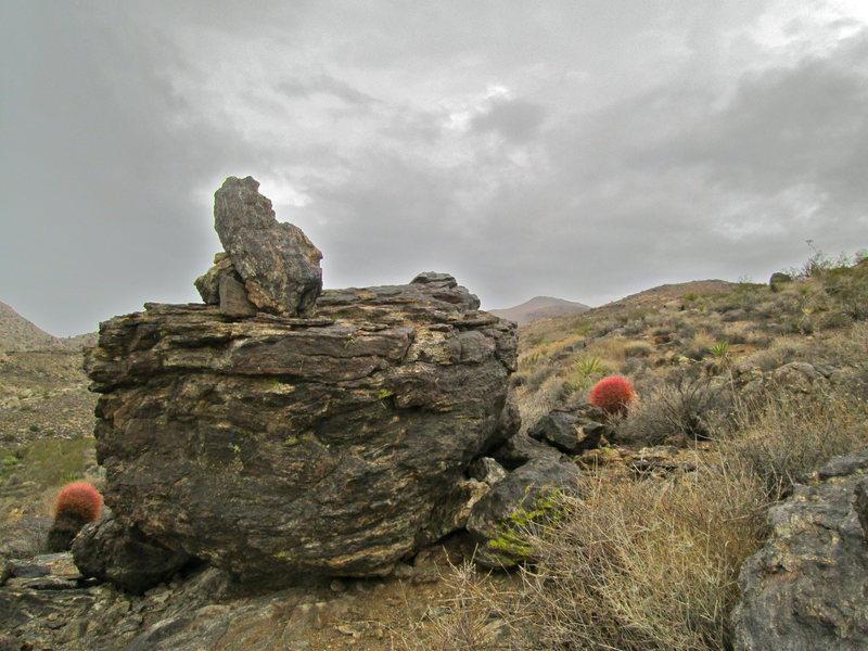 Rock Climbing Photo: A rainy day in Johhny Lang Canyon area.