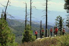 Rock Climbing Photo: More volunteers at work