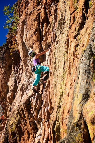 "Fall climbing on ""Forest"". October 2011."