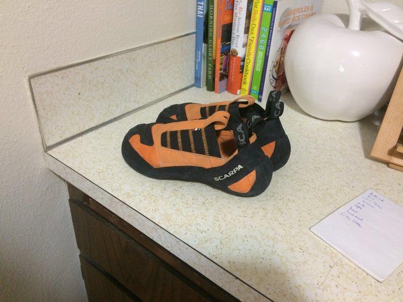 Rock Climbing Photo: Slippers