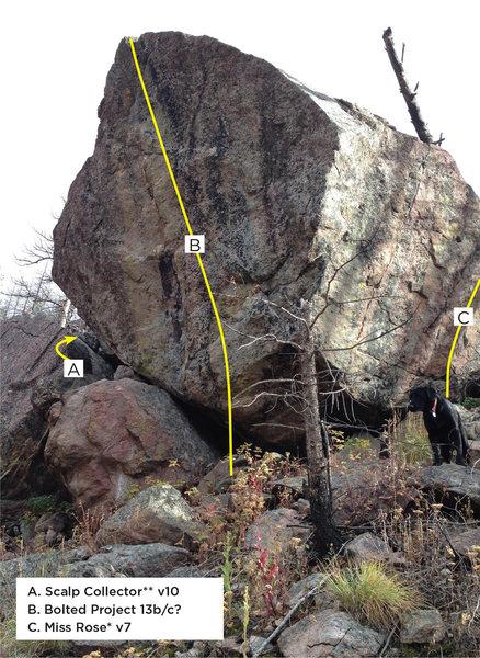 Rock Climbing Photo: Sport Bloc overview.