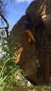 Rock Climbing Photo: Lindner Crack