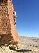 Rock Climbing Photo: High on the face