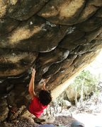Rock Climbing Photo: 'Italian Arrogance', another one of our pr...
