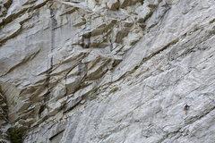 Rock Climbing Photo: Specter