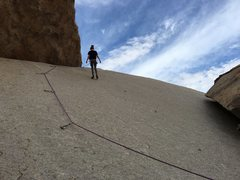 Rock Climbing Photo: 7 year-old daughter getting her first lead in Josh...