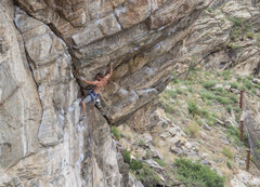 Rock Climbing Photo: Soak up the kneebar while you can!