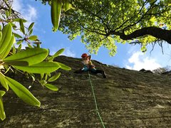 Rock Climbing Photo: danna leading