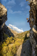 Rock Climbing Photo: Natasha On The Spooky flake.
