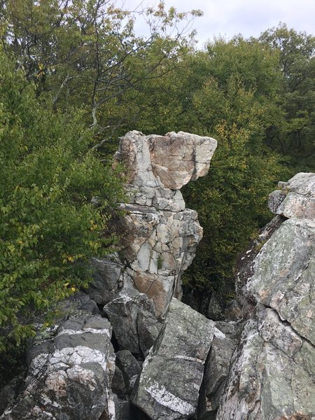 Wolf's Head Pillar, standing guard over the boulder garden at the North end of Wolf Rock