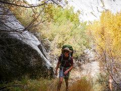 Rock Climbing Photo: i
