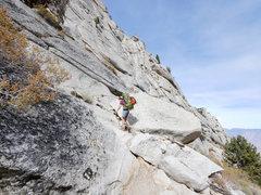 Rock Climbing Photo: ledges, n fork