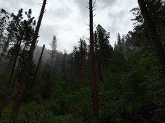 Rock Climbing Photo: Foggy and rainy day at Blue Sky