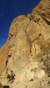 Rock Climbing Photo: Don't Tread on Me
