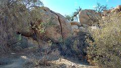 Rock Climbing Photo: Crack a No No