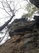 Rock Climbing Photo: Trend right from pee green, cruxy reach at small r...