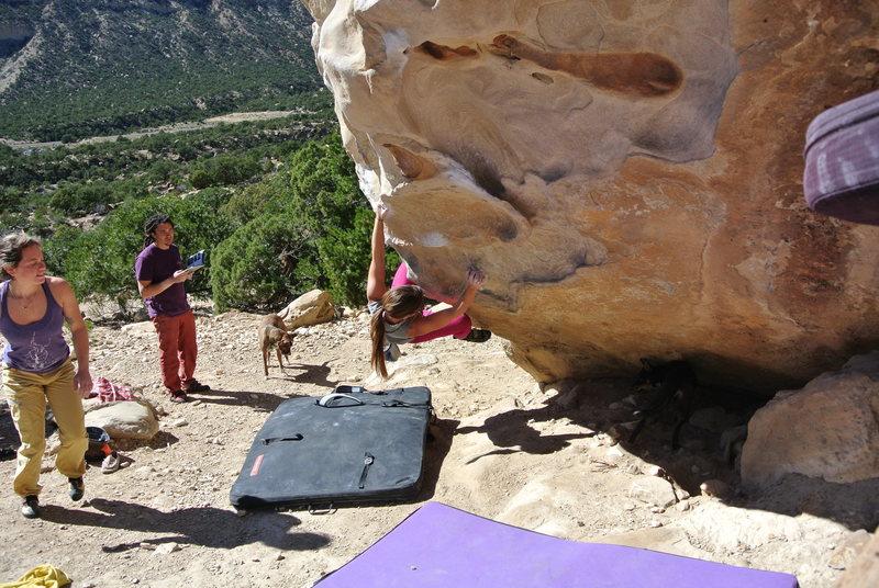 Rock Climbing Photo: Brie begins the Stumblebum Variation (V2).  Stumbl...