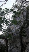 Rock Climbing Photo: Black crags