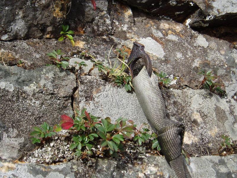 Rock Climbing Photo: Photo#15 - 1930's-50's piton in traverse t...