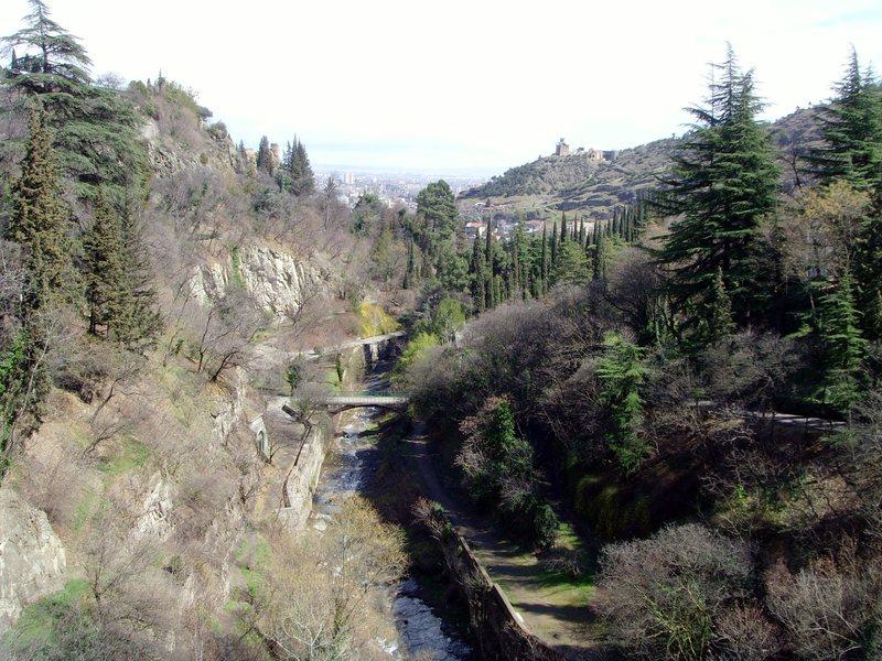 Tbilisi botanical gardens.