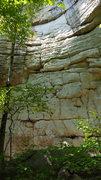 Rock Climbing Photo: Monkey Boy