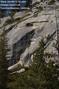 "Rock Climbing Photo: ""Black Like Me"" (5.10b stem)"
