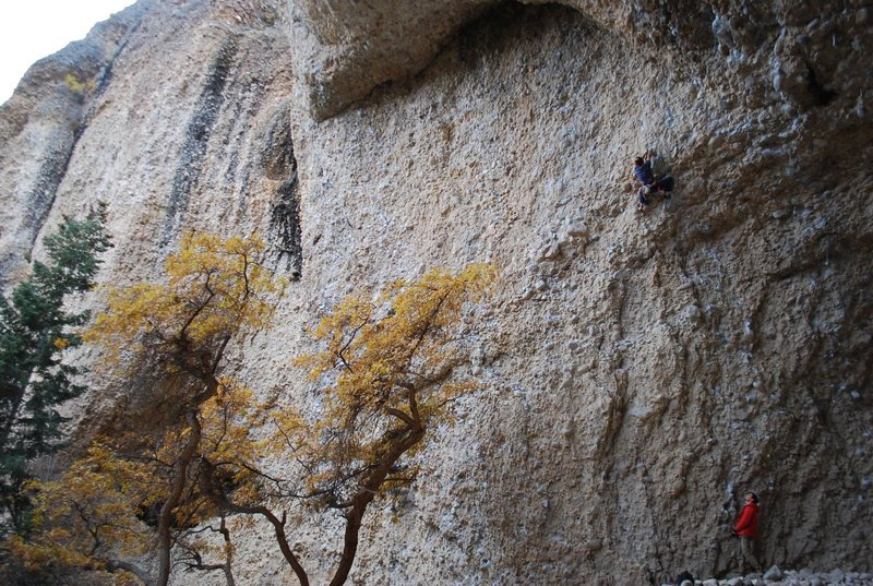 Rock Climbing Photo: Pipe Dream Splendor - about to pull 50 ft. of gymn...