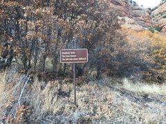 "Rock Climbing Photo: Sign for ""Salt Lake House Billboard"""