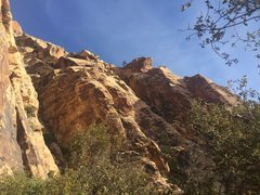 Rock Climbing Photo: On approach of the Basin Wall, looking up at Blue ...