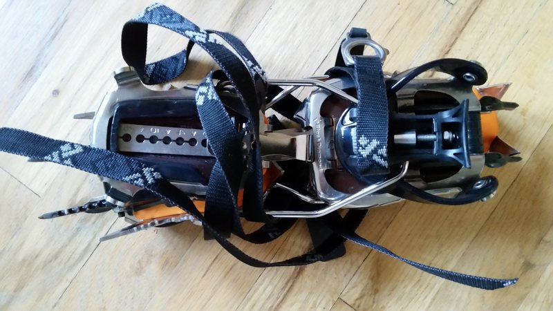 Black Diamond Sabretooth Pro Crampon 2