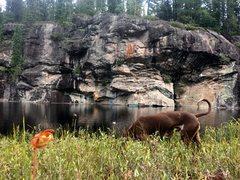 Rock Climbing Photo: Bob on Electric Stegesaurus, 5.11d, Swamp Wall.