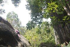 Rock Climbing Photo: Jackson Chimichonga