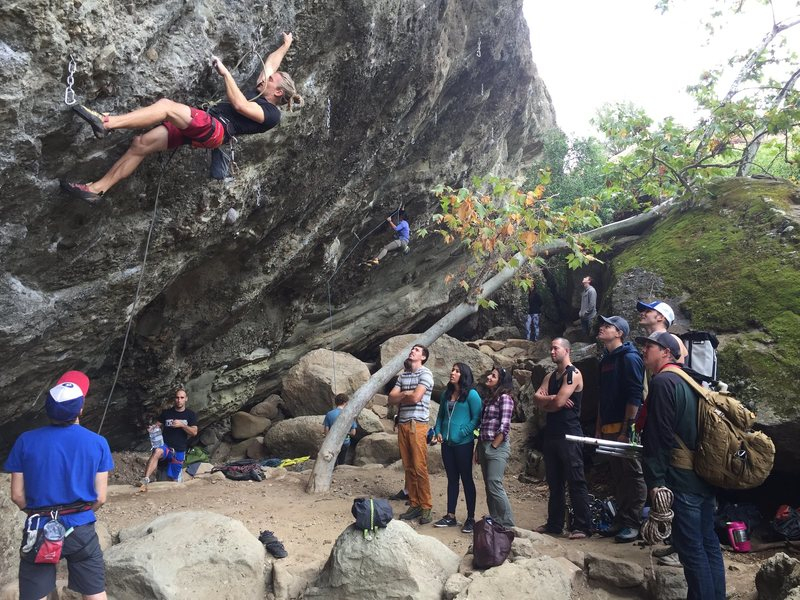 Rock Climbing Photo: Owltoberfest: 2016 sux
